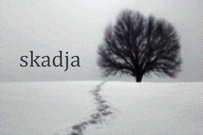Skadja – nowy projekt muzyków związanych z Masala i Lao Che