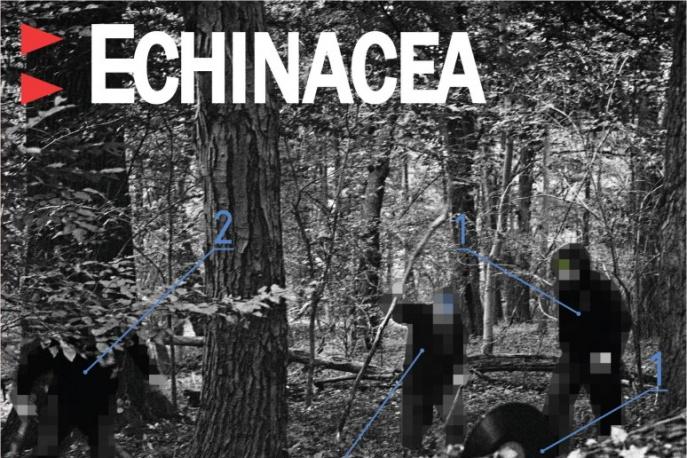 Echinacea: okładka, tracklista, preorder…