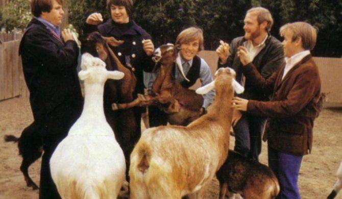 Beach Boys: Daleko nam do The Beatles