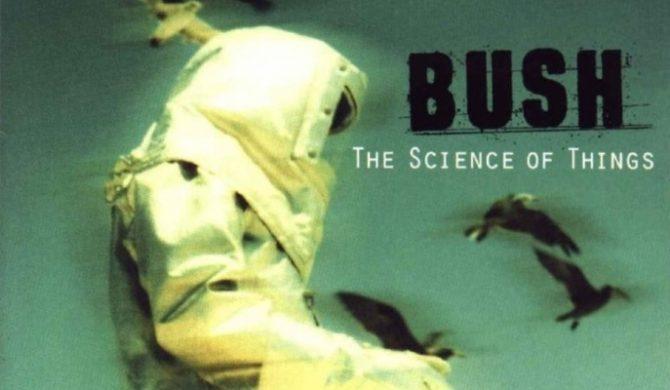 Nowy album Bush