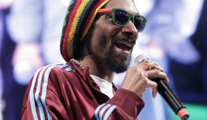 Snoop Lion ścigany za podatki