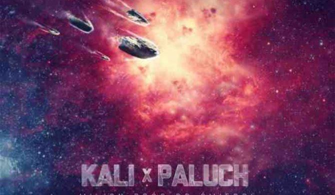 Kolejny singiel z płyty Kaliego i Palucha (audio)