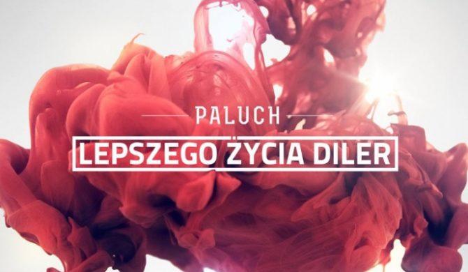 Złota Płyta dla Palucha