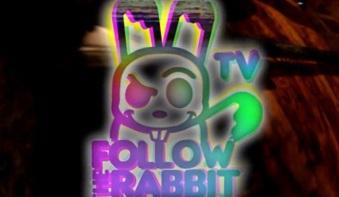 Wraca Follow The Rabbit TV (wideo)