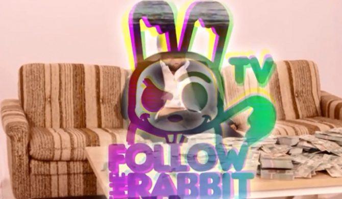 """Follow The Rabbit i """"Wielki błękit"""" (wideo)"""