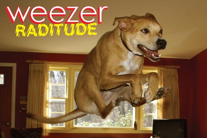 Kreatywny Weezer